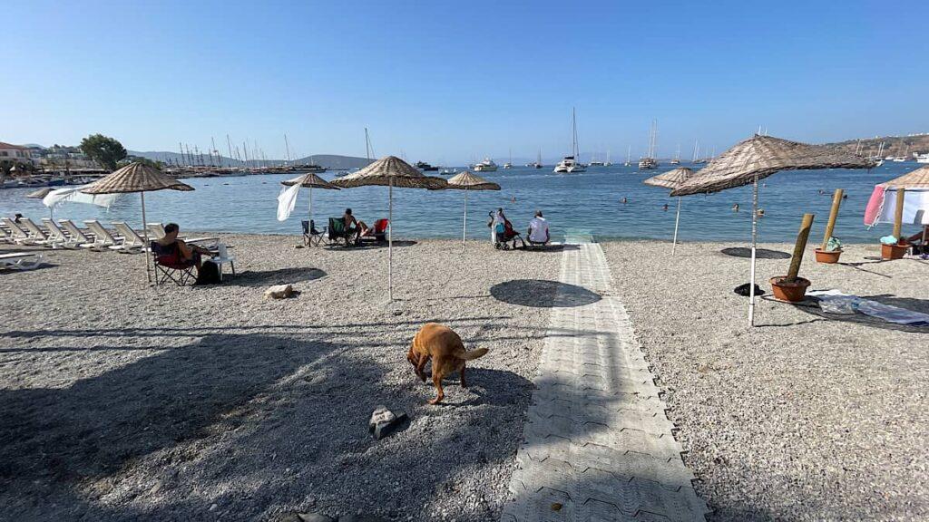 bodrum plajları